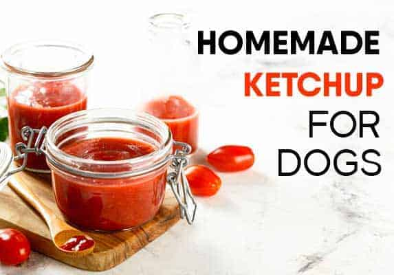 Homemade ketchup for dogs