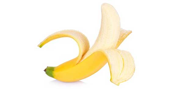 banana for greyhound