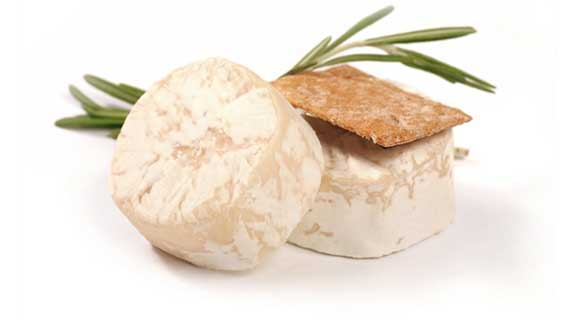 Goat Cheese For Dogs