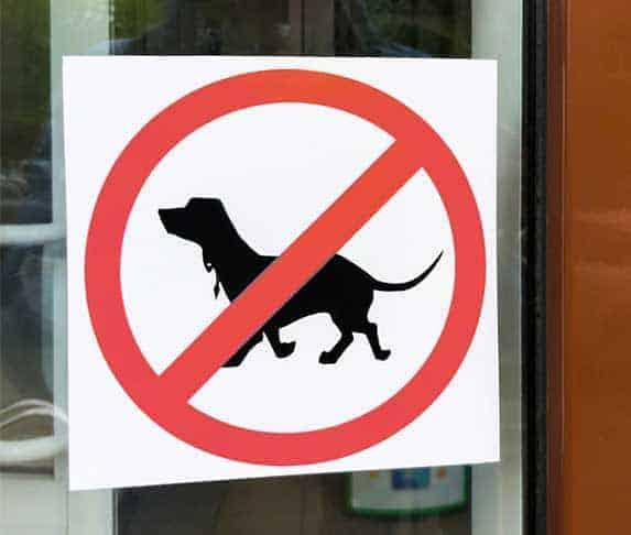 menards no pet policy