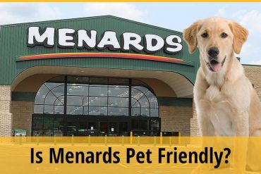 Is Menards Pet Friendly