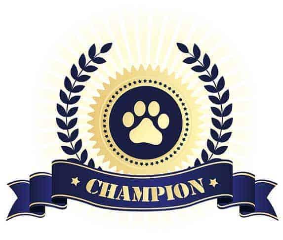 champion bloodline