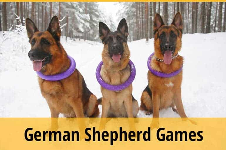List of Fun Games For German Shepherds