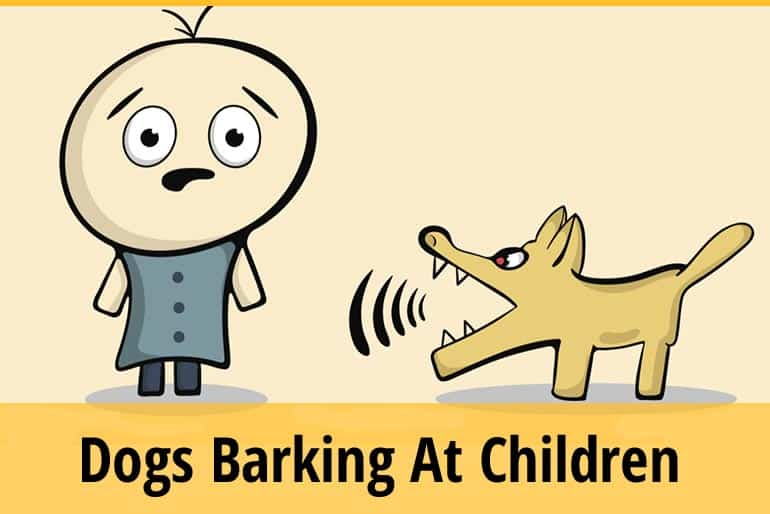 How To Stop Dog Barking At Children
