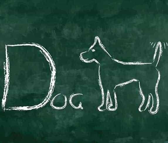 dog illustration in a blackboard