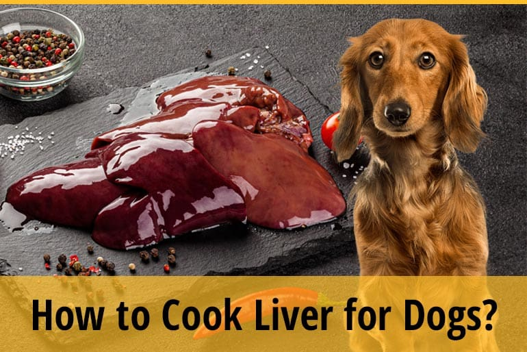 How To Cook Liver For Dogs