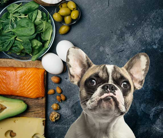 keto food for dogs