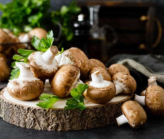 edible mushroom for dogs