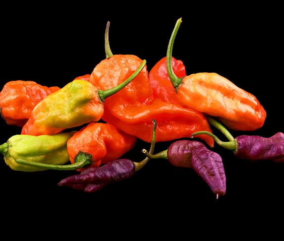 ghost pepper color