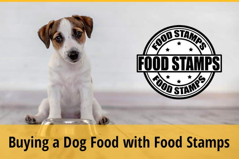 Can You Purchase Dog Food with Food Stamps